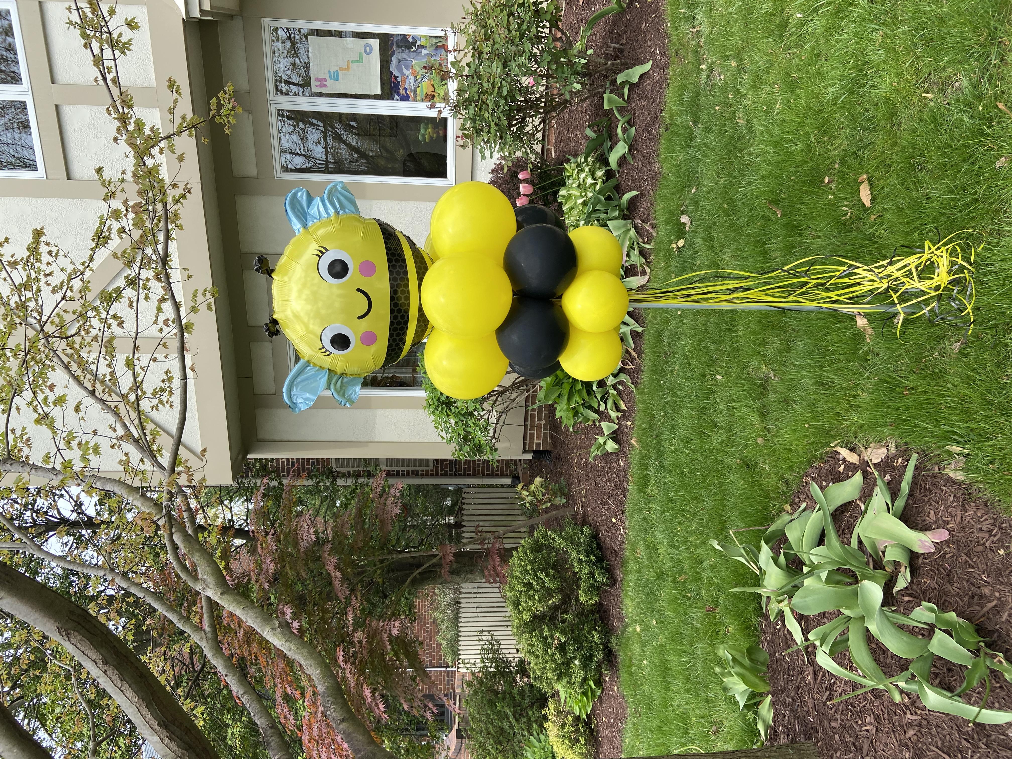 Yard Balloons | DC