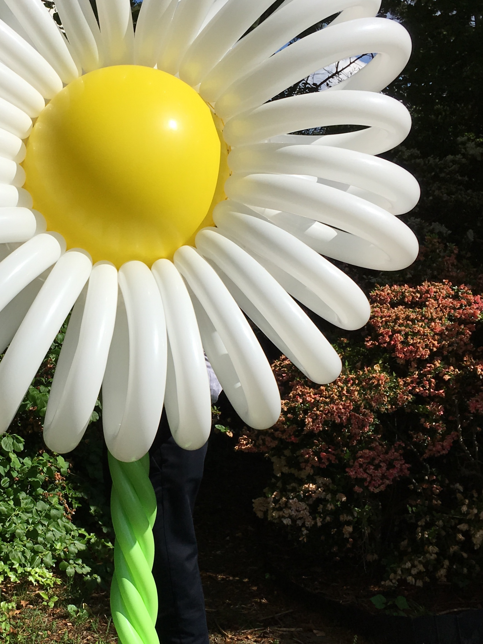 Flower Balloon Column | Washington DC | Balloon Zoom