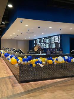 Organic Balloon Installations in DC and DMV | Balloon Zoom