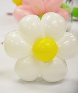 Balloon Daisy Centerpieces | Washington DC | Balloon Zoom