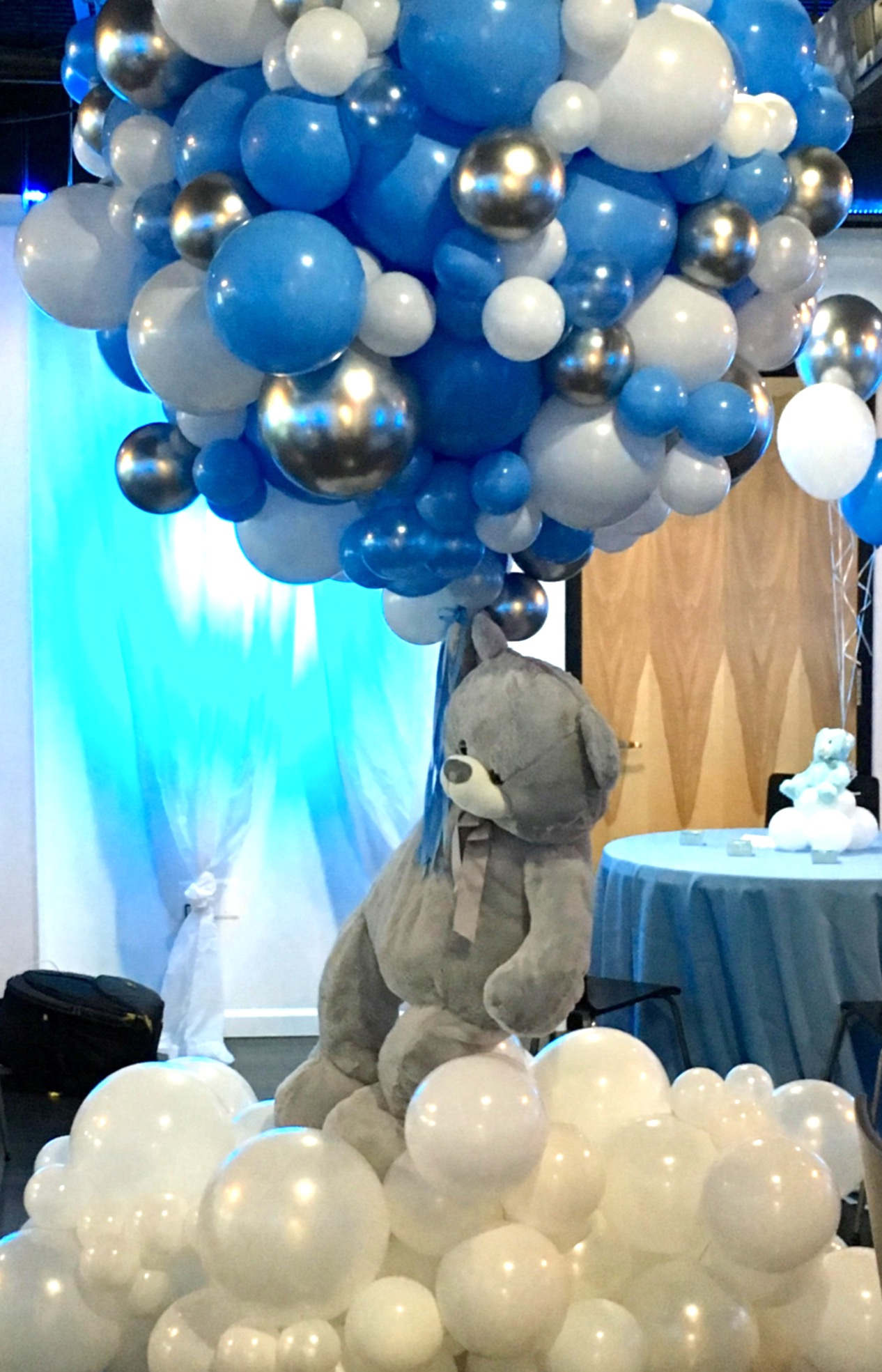 Balloon Sculptures   DC