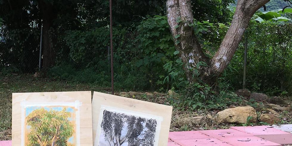 Sketching in the Garden