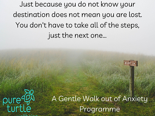 Gentle Walk Out of Anxiety with Meditation Package.