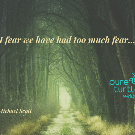 I fear we have had too much fear...