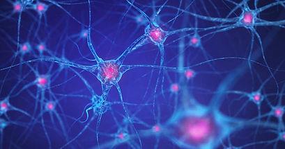 how-brain-works-basics-2.jpg