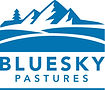 BlueSky_Logo_Blue.jpg