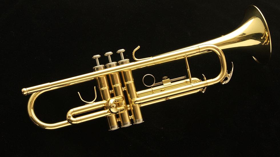 Trompeta Harlem TP300 Nueva! Con estuche ligero