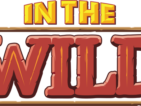 VBS 2019 | In the Wild
