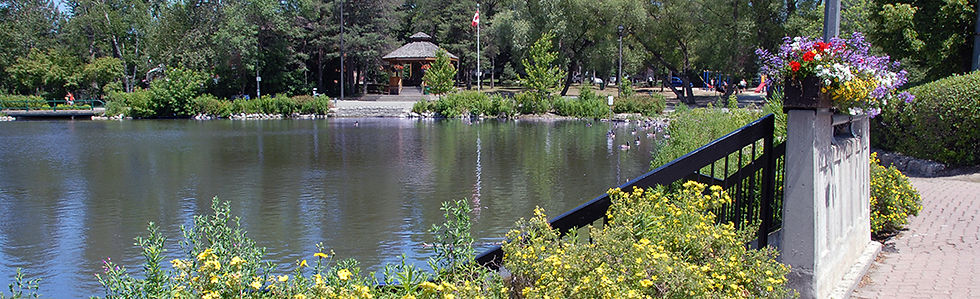 banner-mill-pond-project.jpg