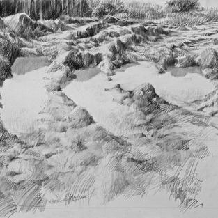 Mudscape #5