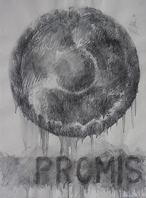 promis.jpg