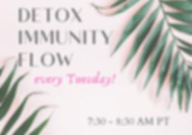detox immunity final (1).png