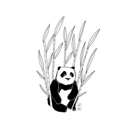 Bamboo, 2019