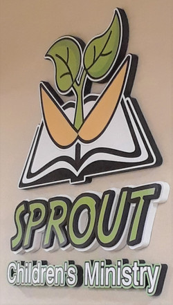 Sprouts -  Edited for Web