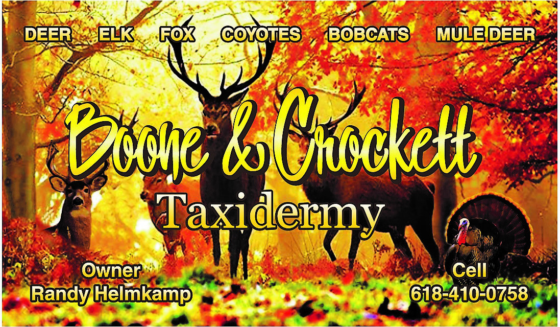 Boone & Crockett Taxidermy