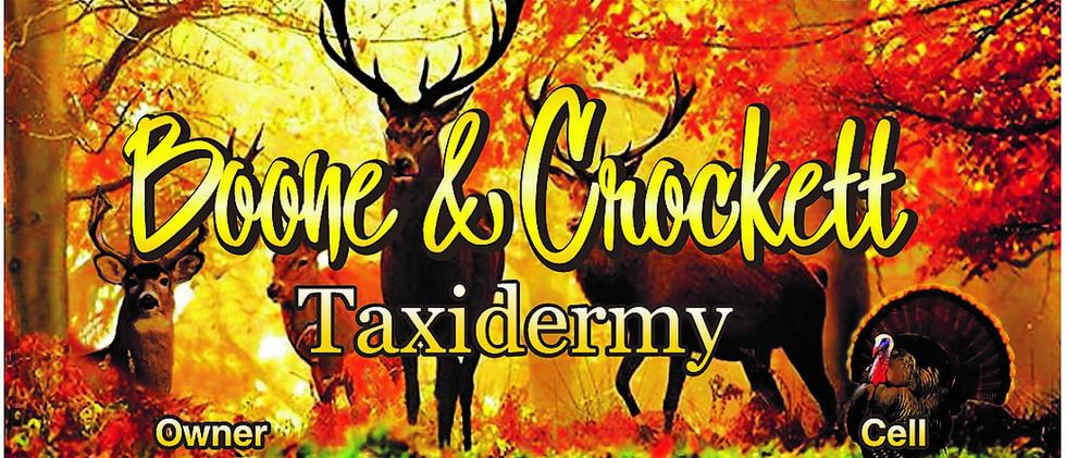 Boone & Crockett Taxidermy