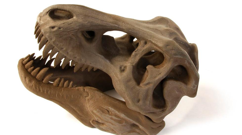 3D Printed Proto-Pasta BronzeFill T-Rex Skull