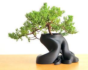 gcreate bonsai planter.jpg
