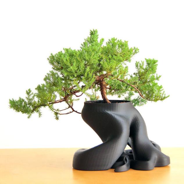 gCreate Bonsai Planter