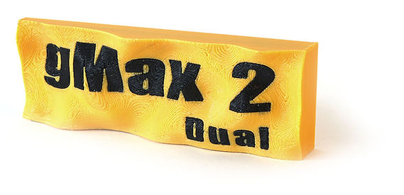 dual logo_2.jpg