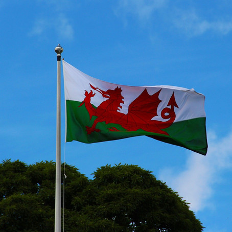 Why Do People From Wales Celebrate St David's and How To Wish Someone Happy St David's Day in Welsh