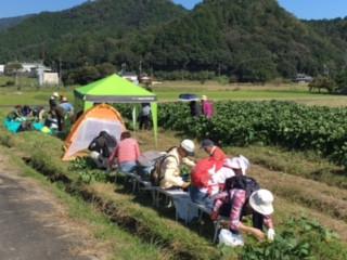 Kファーム黒枝豆収穫祭2017  参加者募集!