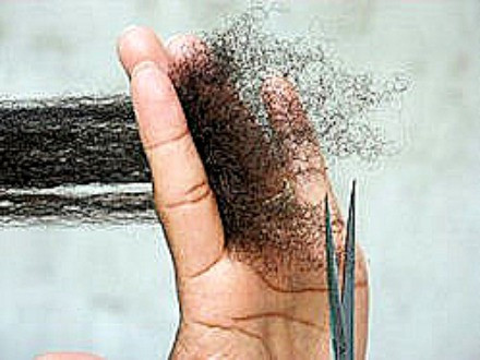 The truth about hair shedding, Hair breakage and split end.