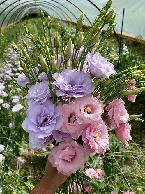 Bi-Monthly Bouquet Subscription