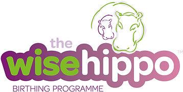 twh-birthing-programme-logo-wide-1772x89
