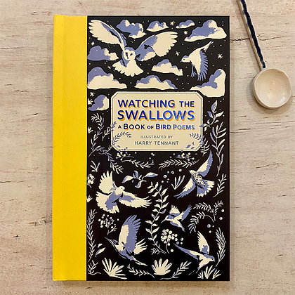 Watching the Swallows - a book of Bird Poems