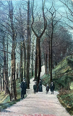Pine Walk, or 'When Katie met Arthur'