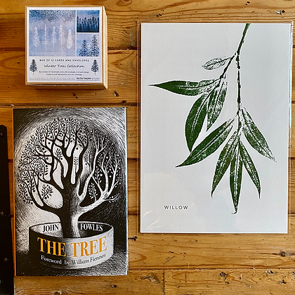 Tree gift box