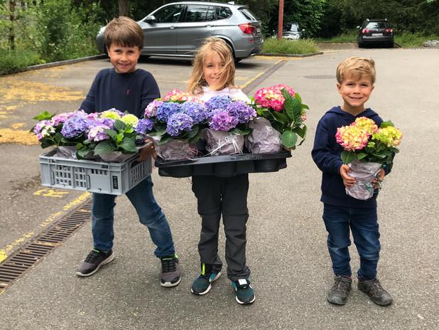 Blumen Jungs