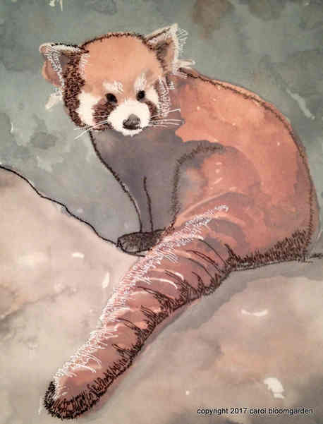 Red Panda: Endangered Species Series (SOLD)