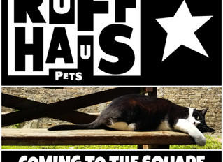 Ruff Haus Pets: Coming to the Square this Fall!