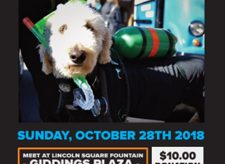 Annual Pet Parade & Costume Contest!