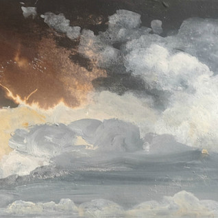 In His Element - Storm Petrel.jpg