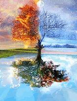 fuego, tierra, agua y aire, cuerpo en acción, entrenamiento corporal, acciones fisicas desde los 4 elementos