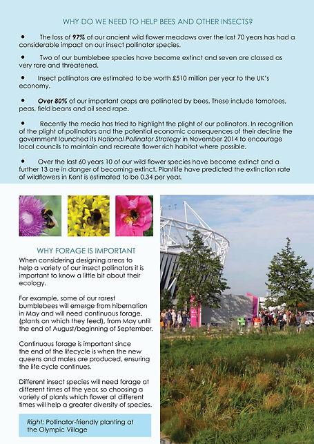 Pollinators_0002.jpg