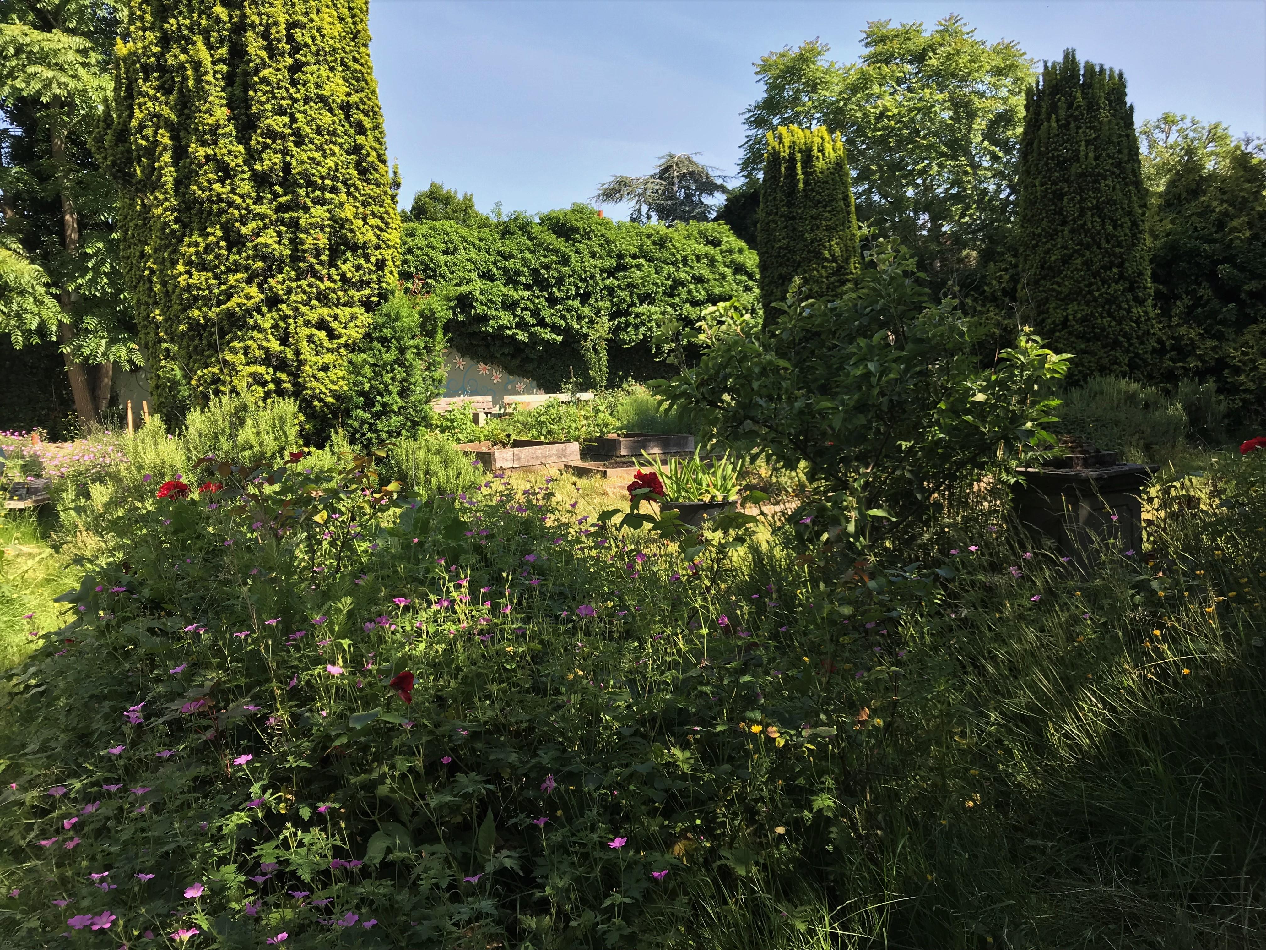 School Garden in Spring