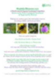 Biophilia Blossoms 2020 info page .jpg