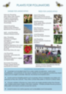 Pollinators_0003 (1).jpg