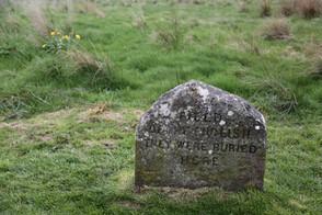 Culloden Battlefield, National Trust for Scotland, Culloden Moor