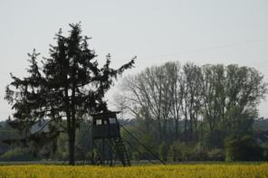 Landkreis Darmstadt-Dieburg, LaDaDi, Hochsitz