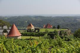 Riegersburg, Burg, Greisvogelwarte, Vulkanfelsen, Südoststeiermark, Steiermark, Österreich