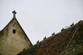 Wehrkirche St. Michael, Wachau, Österreich