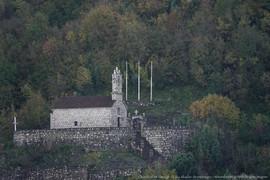 Skadarsee, Skutarisee, Shkodrasee, Skadarsko Jezero, Morača, Montenegro, Crna Gora, Wasserfrösche, Komoran, Krauskopfpelikan