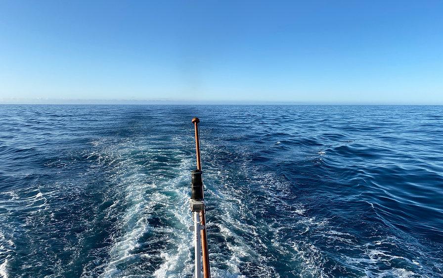 Drake Passage gen Norden