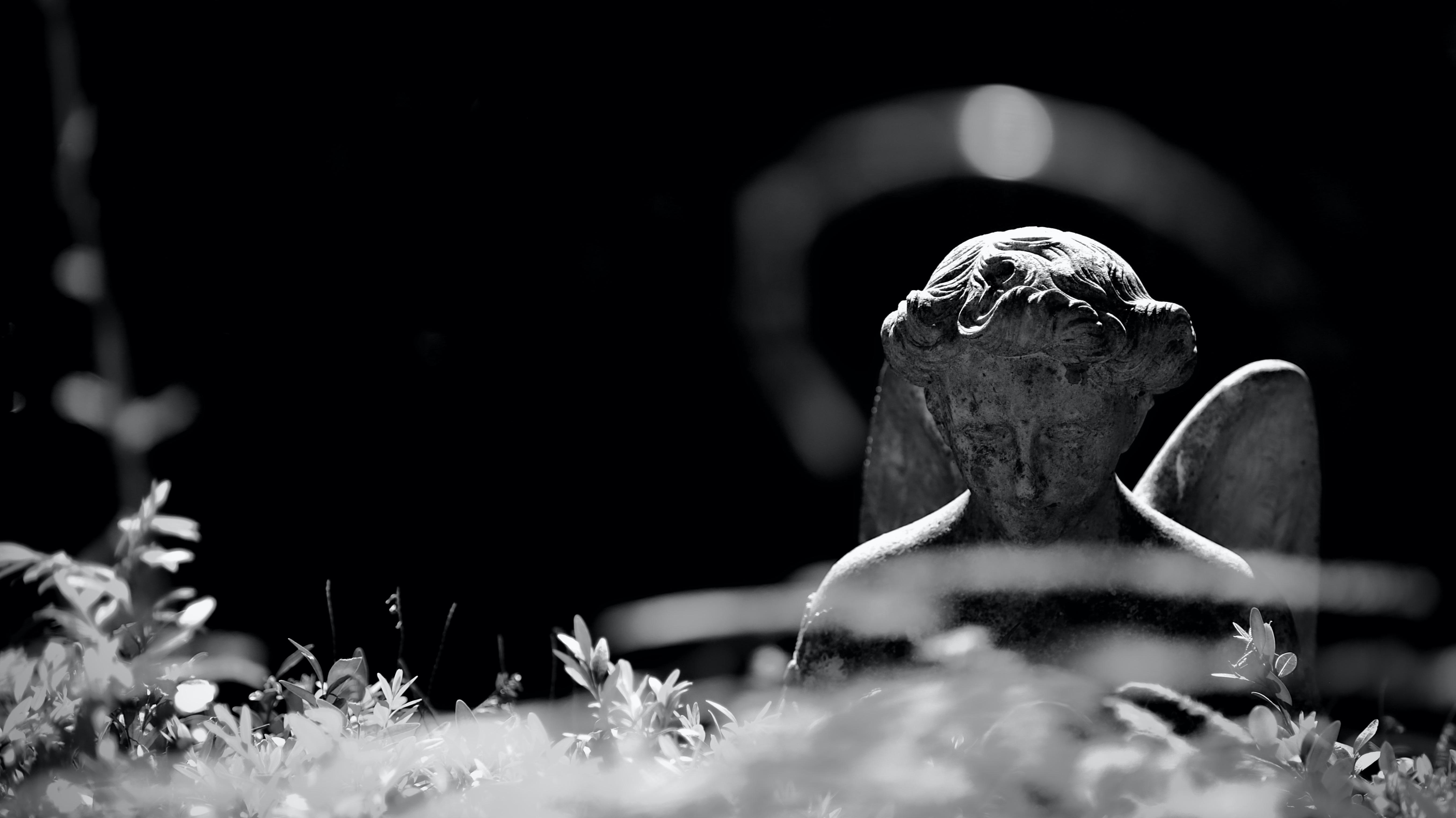 TAPHOPHILIA, Friedhofsfotografie