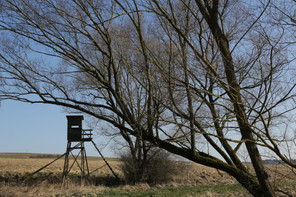 Meerpfuhl, Taunus, Hessen, Winter